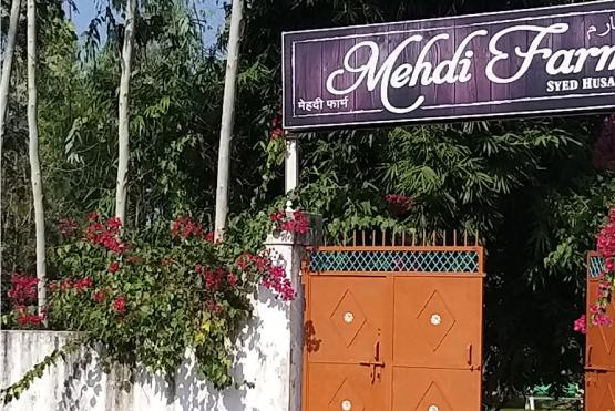 Mehdi Farm